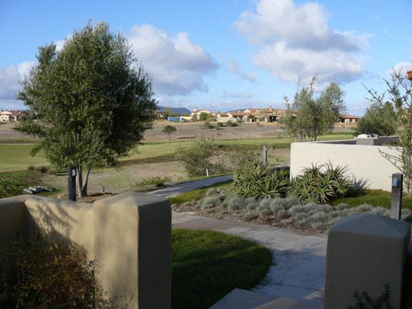 Frontyard01